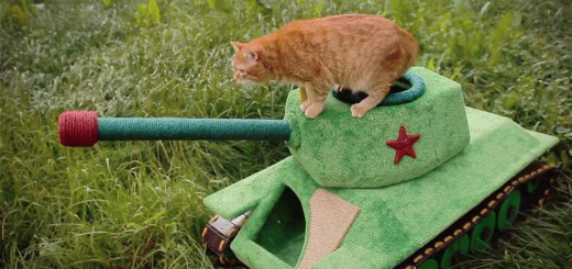 Czołg dla kota