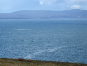 Scapa_Flow_from_Gaitnip_cliffs_small